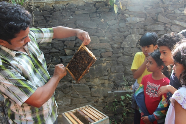 ... who showed us the wonders of the workings of a bee hive and ...