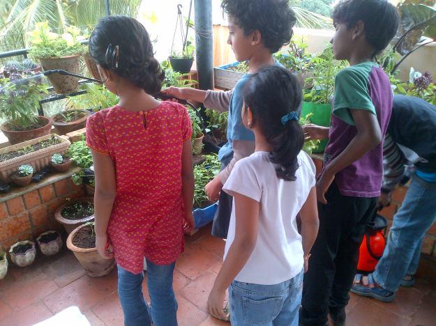 Spraying an organic pesticide